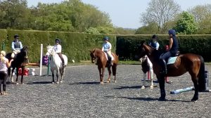 Show jumping clinic