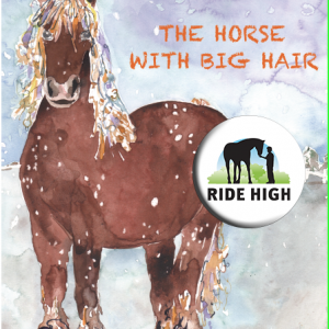 The Horse with Big Hair by Sally Burrell
